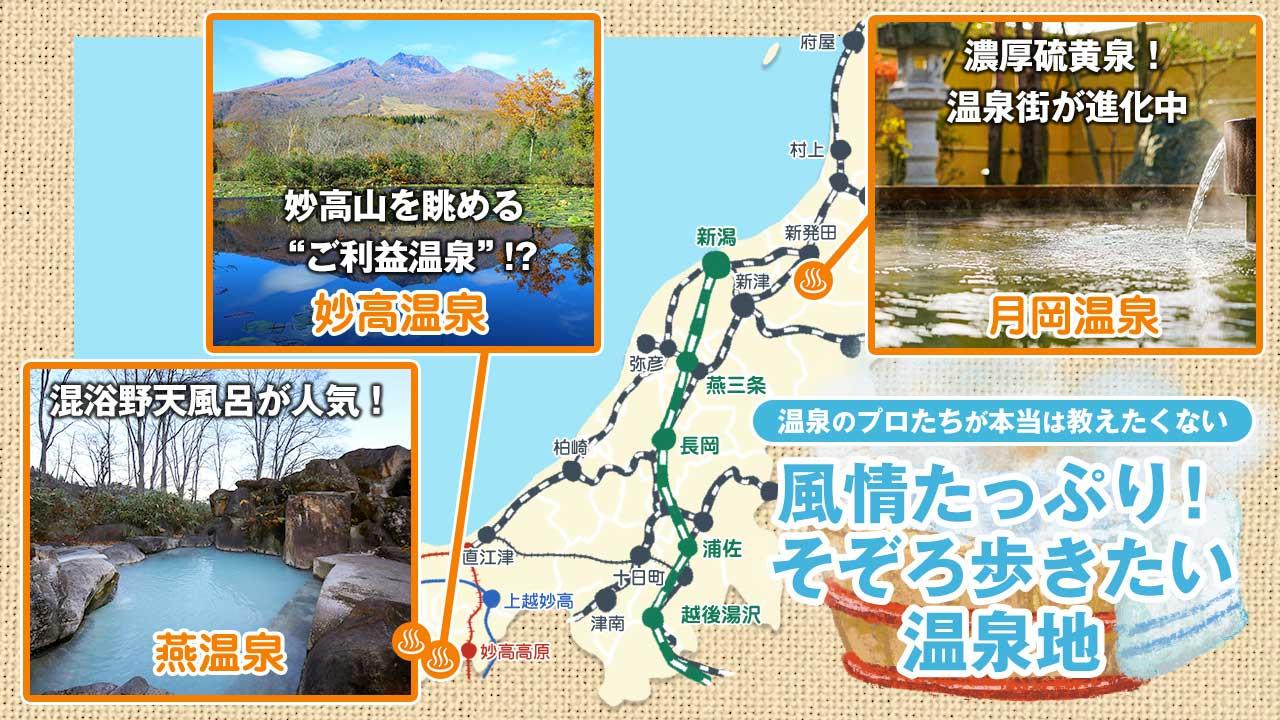 新潟県の温泉地マップ