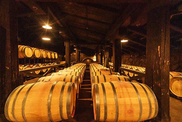 ワイン樽が並ぶ
